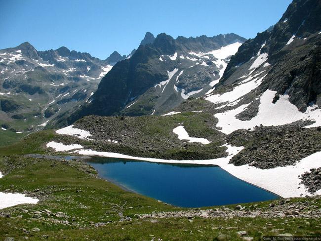 Вид: Северный Кавказ