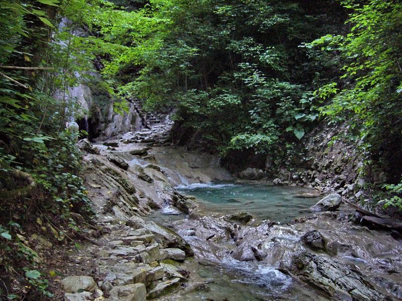 Сочинский национальный парк вид