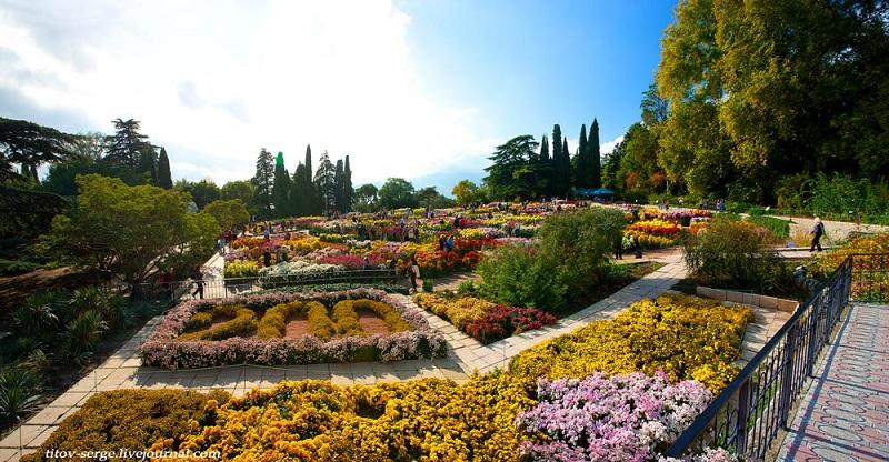 Никитский ботанический сад цветы