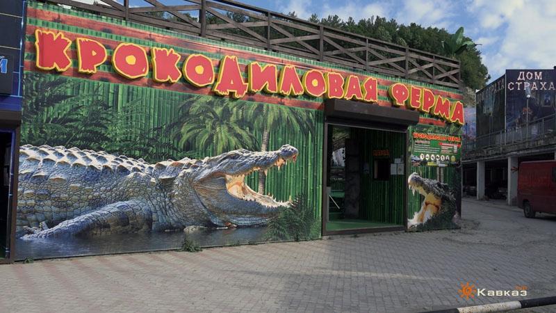 ОЛьгинка Крокодиловая ферма
