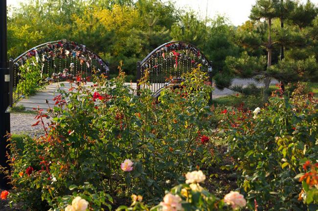 Парк «Аллея роз»