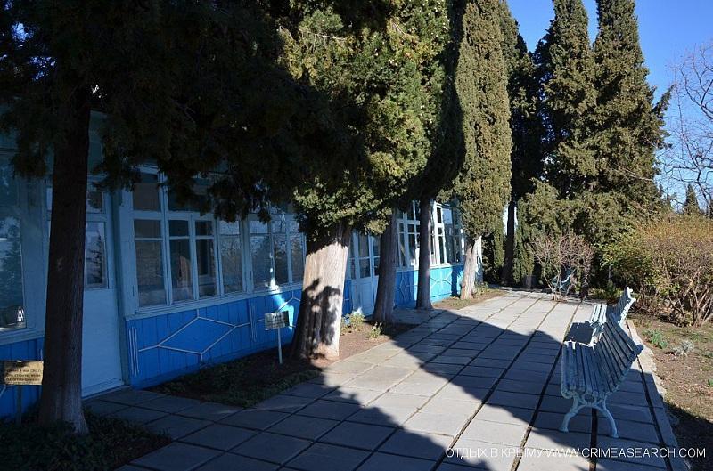 Литературно-мемориальный музей Сергеева Ценского сад