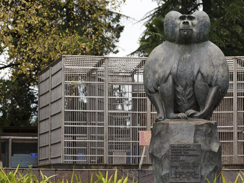 НИИ экспериментальной патологии и терапии (Сухумский обезьяний питомник)