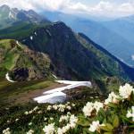Красная поляна, Эсто-Садок и Роза-Хутор: что обязательно посмотреть летом?