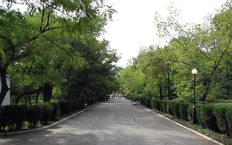 Саки парк