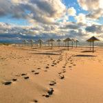 Пляжи Янтарного и окрестностей: полный список с отзывами на карте
