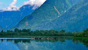 Поездка на Телецкое озеро: на Южный берег через Чулышманскую долину