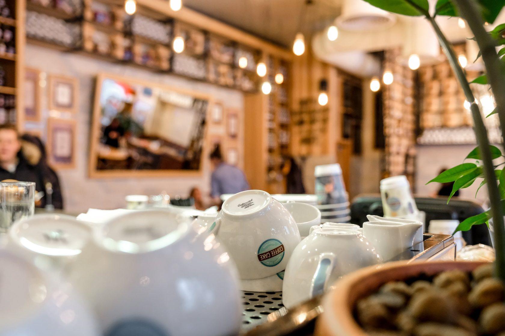Топ-10 кафе и ресторанов Нижнего Новгорода, где можно вкусно и недорого поесть: адреса, цены, отзывы